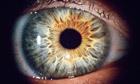 Memory contaminates perception | Cognitive Science | Scoop.it
