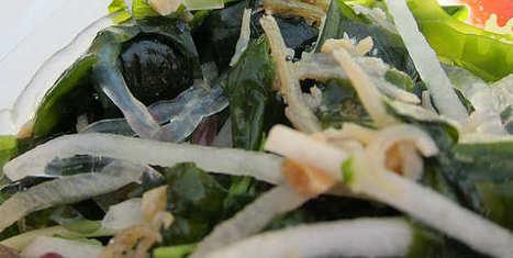 Les algues alimentaires: 10 millions de tonnes produites en 2014 - Agro Media | Chimie verte et agroécologie | Scoop.it