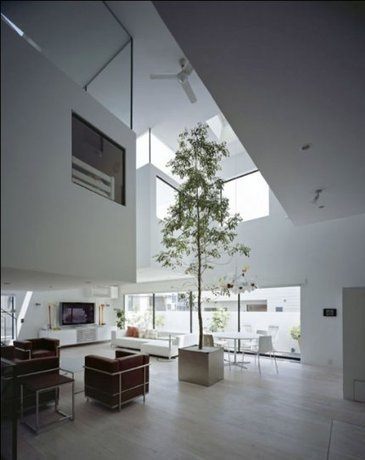 Plantes d'intérieur : tout savoir sur les plantes dépolluantes | Immobilier | Scoop.it