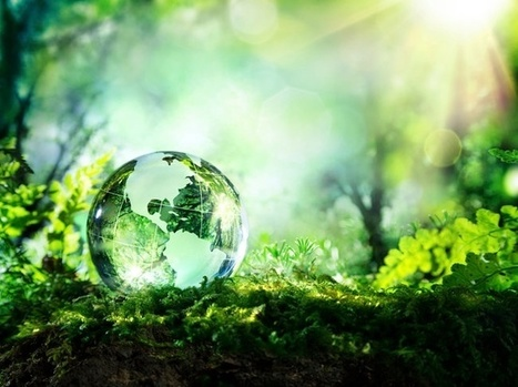 Going Green Is About More Than Just the Environment | Green IT Focus | Scoop.it