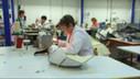La PME française de cuir automobile qui roule bien   Métiers, emplois et formations dans la filière cuir   Scoop.it