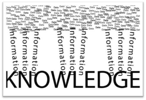 Importance des réseaux sociaux dans la gestion des connaissances | BloomDesk | Scoop.it