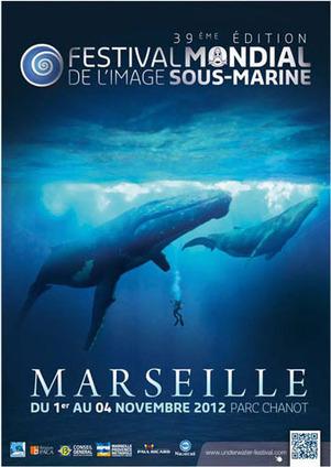 Festival Mondial de l'Image sous-marine à Marseille | ediving | Scoop.it