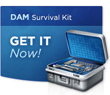 DAM Success | What is Digital Asset Management | DAMSuccess.com | Digital-Asset-Management | Scoop.it