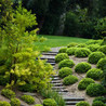 The landscaping company is one - APA Landscape Design & Insulation