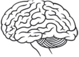 As I Get Older, Why Does My Memory for Names Seem to Deteriorate?: Scientific American   cognition   Scoop.it