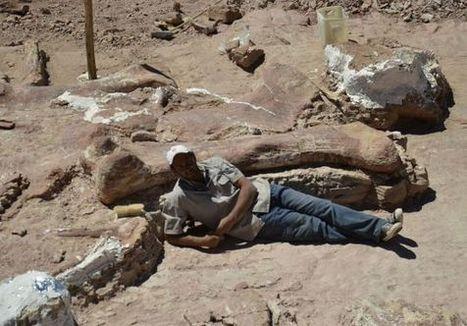 El reino de los dinosaurios gigantes | Arte, Literatura, Música, Cine, Historia... | Scoop.it