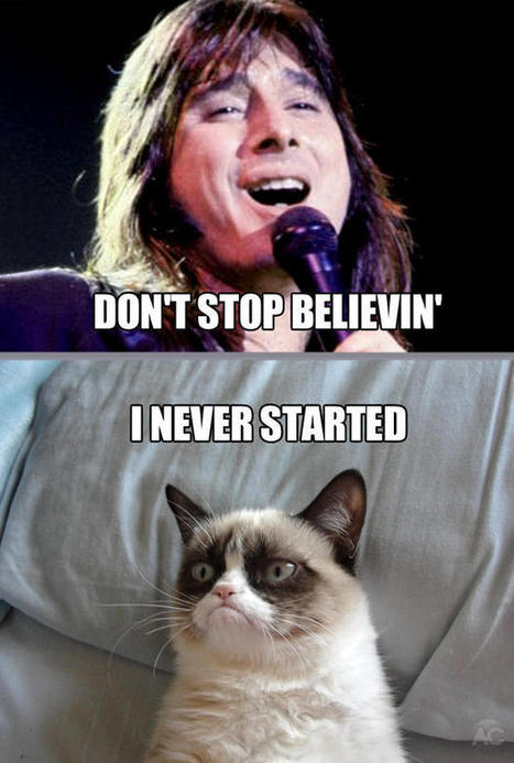Funny Grumpy Cat Quotes - Pictures Worth Sharing! | Pets World | Cats Rule the World | Scoop.it