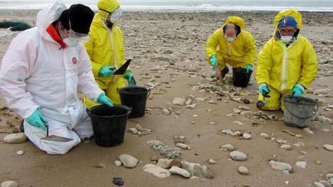 """Pollution sur plages de Vendée. Galettes de mazout, une origine """"accidentelle""""   Toxique, soyons vigilant !   Scoop.it"""