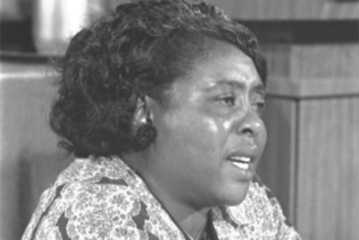 The 50th Anniversary of Mississippi's Freedom Summer: Remembering What Fannie Lou Hamer Taught Us | Herstory | Scoop.it