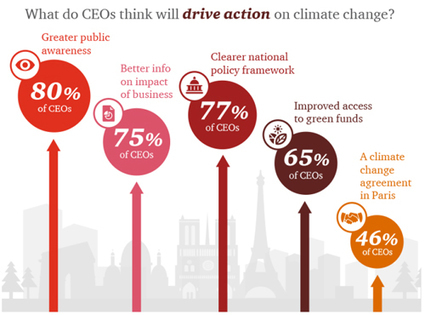 PWC Report: 75% of Business leaders shifting strategic investments to green growth opportunities | Développement durable et efficacité énergétique | Scoop.it