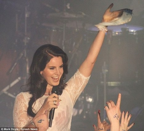 Lana Del Rey gets the Tom Jones treatment as fans throw their knickers at her ... | Lana Del Rey - Lizzy Grant | Scoop.it