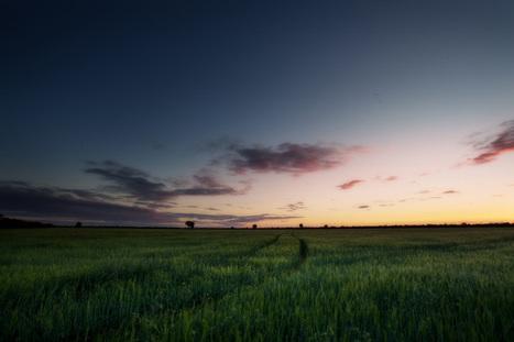 Australian trade beats aid in boosting global food security | The Barley Mow | Scoop.it