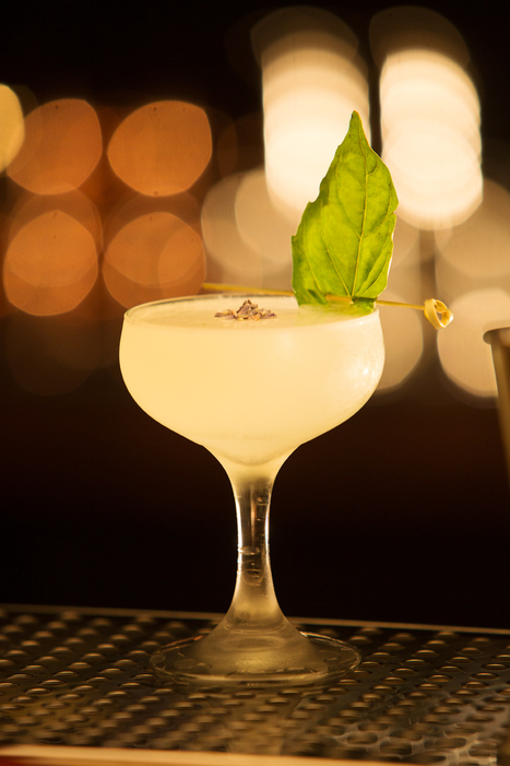 Tiffany's Lavender Basil Gimlet — Edible Baja Arizona Magazine | Food for Foodies | Scoop.it