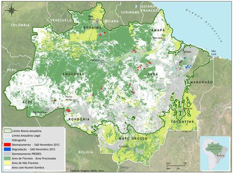 Aumento do desmatamento continua em novembro | Geoflorestas | Scoop.it