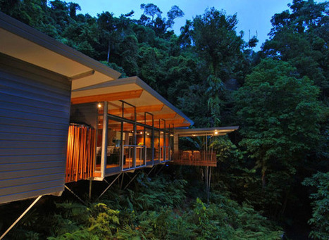 Modern Tree House in Australia Opening Up Towards a Lush Landscape | sustainable architecture | Scoop.it