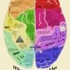 games  for  improving  intellgence