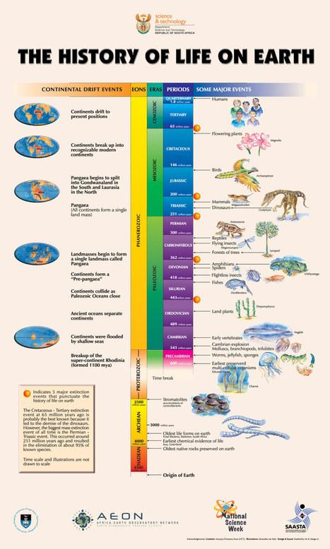 the evolution of life around technology