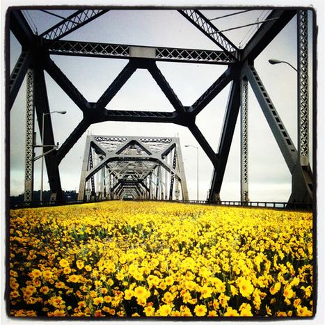 reTHINK Bay Bridge: Rethinking The Bay Line – RAEL SAN FRATELLO   Cities of the World   Scoop.it