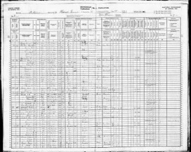 Clues You Can Find in a Census Record! | Family History Research | Scoop.it