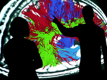 Campaign 2014: PhD positions - Inria | Web Programming | Scoop.it