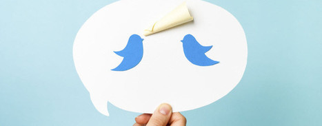 What Small Businesses Need to Know About the New Twitter Image Preview | Super Social Media | Scoop.it