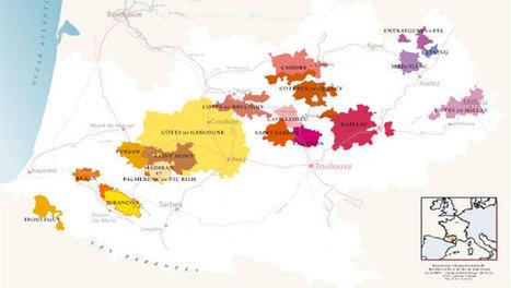 (Re)Découverte des cépages du Sud-Ouest | Vin & Vins du Sud-Ouest | Scoop.it
