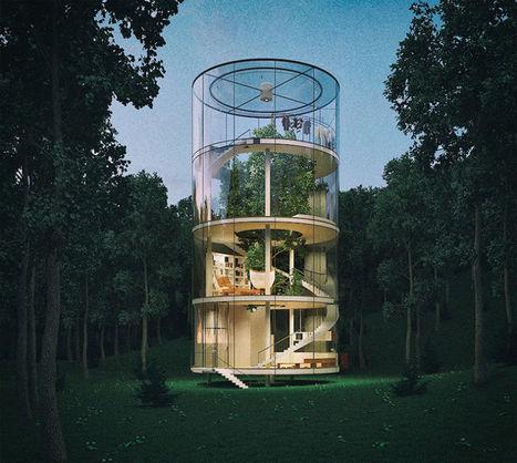 Une maison en verre dans les arbres, l'alternative au béton des grandes villes | Conscience - Sagesse - Transformation - IC - Mutation | Scoop.it