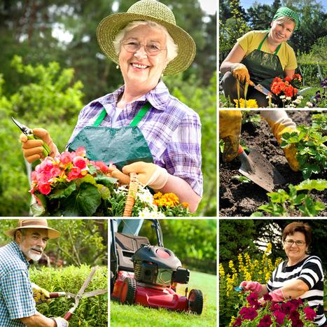 Choosing the Best Gardening Tools – A Top 10 Guide | Gardening Galore | Scoop.it