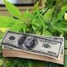 Medical Marijuana Dispensary App