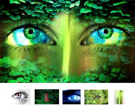 www.sustentabilidadedigital.eco.br   Digital Sustainability   Scoop.it