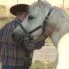 Confident Horsemanship