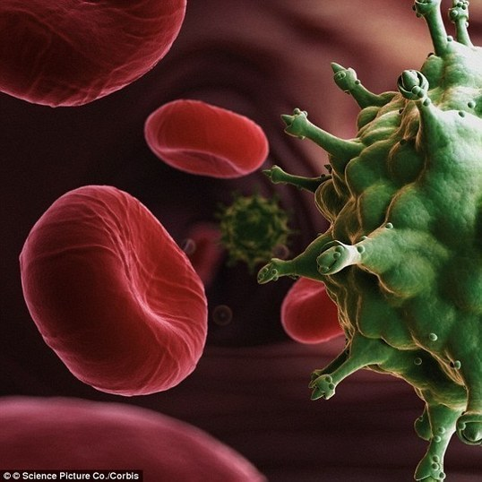 a study of hiv virus and aids