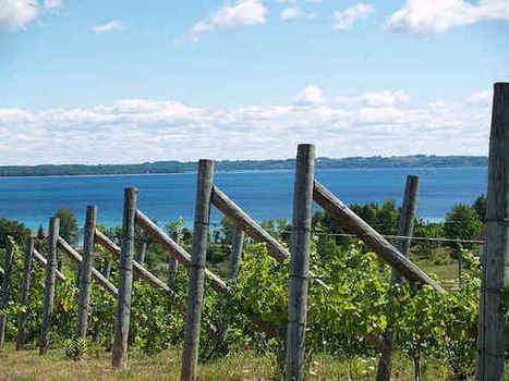 7 Under-The-Radar Wine Regions You Need to Visit | Route des vins | Scoop.it