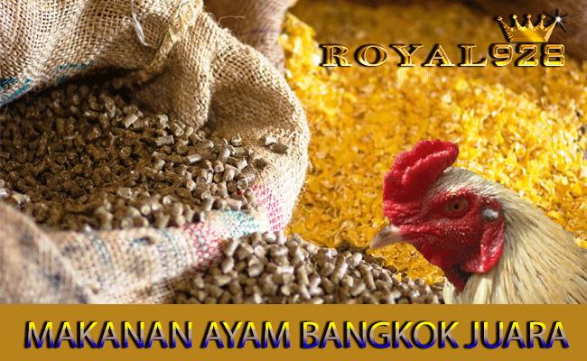 Makanan Ayam Bangkok Aduan Untuk Menjadi J