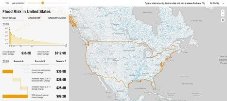 An Interactive Flood Tool to Calculate Climate Change Risks | green infographics | Scoop.it