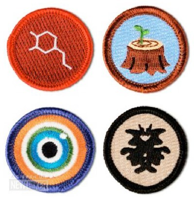 The Social Psychology of Badges | Into the Driver's Seat | Scoop.it