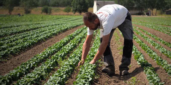 EU: Après des négociations tendues, les eurodéputés adoptent la nouvelle politique agricole commune