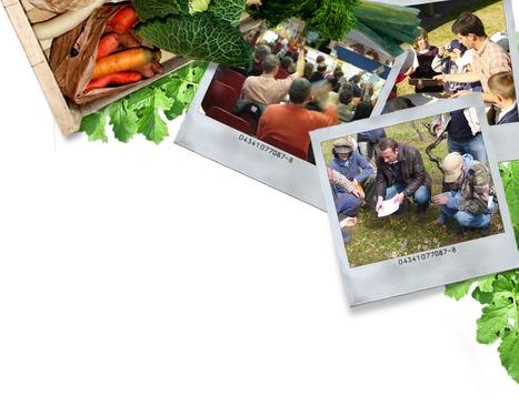 Etude américaine: l'agriculture biologique surpasse l'agriculture conventionnelle | SOUVERAINETÉ ALIMENTAIRE PARTOUT | Scoop.it