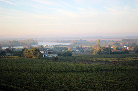American billionaire buys Chateau Gaby in Bordeaux - Decanter | Planet Bordeaux - The Heart & Soul of Bordeaux | Scoop.it