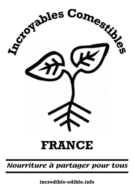 Lancer les INCROYABLES Comestibles dans sa ville ou son village : la méthode en 5 étapes | Développement social et culturel de territoires | Scoop.it