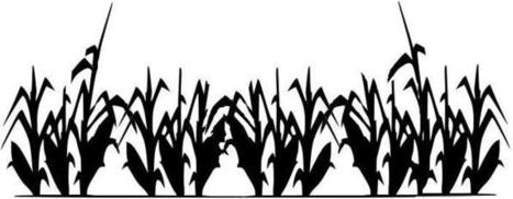 Silhouette Lawn With Corn And Shadow Stock Illustration ...   Cornfield Silhouette
