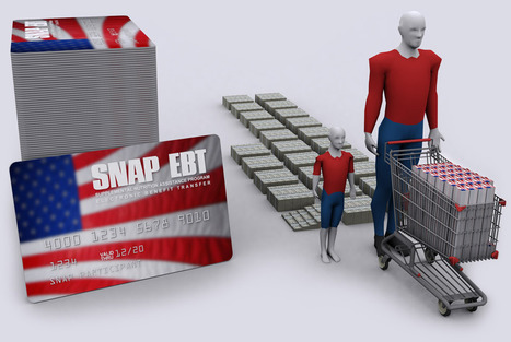 America: The Food Stamp Nation | News & Politics | Scoop.it