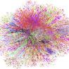 Human Behavior in networks