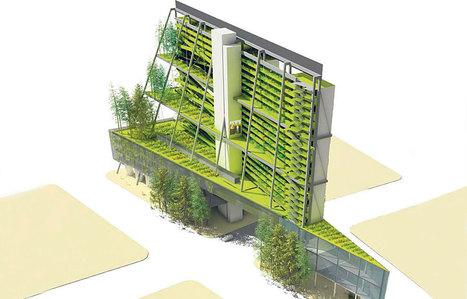 PARIS: Une jeune société propose des fermes Bio sur les toits | News from France | Scoop.it