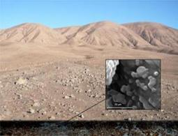 Underground oasis found below Earth's driest desert - space - 18 February 2012 - New Scientist | Exploring Amateur Astronomy | Scoop.it