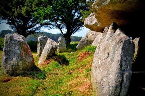 PHOTOS: L'Allée Couverte de l'Île Grande   Mégalithismes   Scoop.it