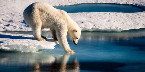 En Arctique, la température excède de 20°C la normale | Acteurs de la transition énergétique | Scoop.it
