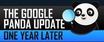 Infographic: The Google Panda Update, One Year Later | Engagement | Scoop.it