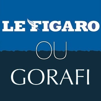 Figaro ou Gorafi ? | Mais n'importe quoi ! | Scoop.it